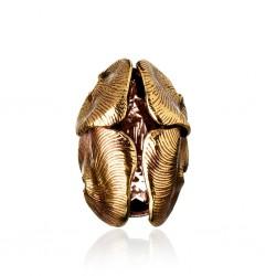 Anel Claudia Arbex Aura Ouro Vintage